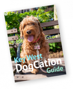 DogCation Guide