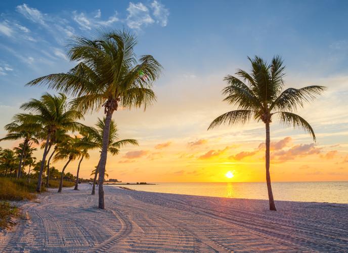 sunset palms on smathers beach